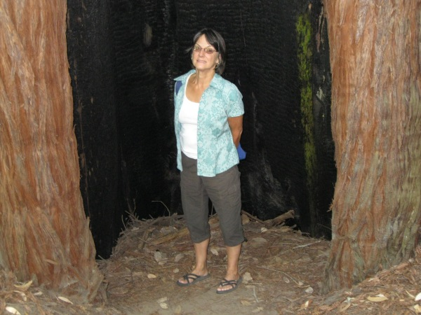 12_Louise inside burnt out redwood