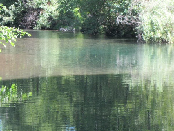 15_and downstream, other springs