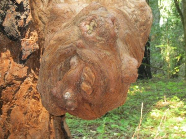 15_sculpture up close