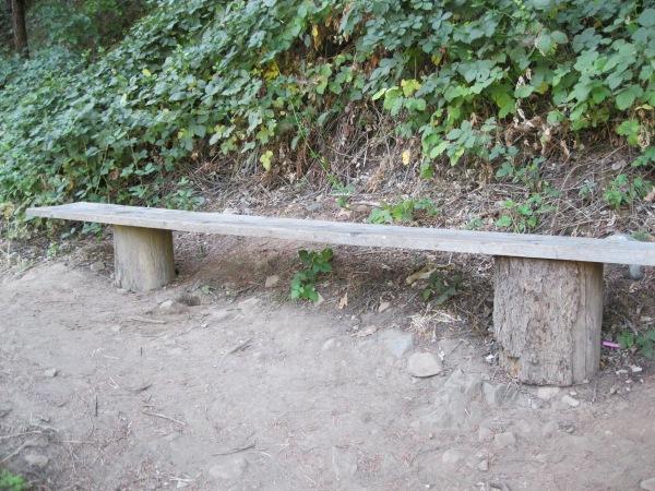 17_bench