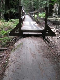 20_Mont2_and bridge walkway