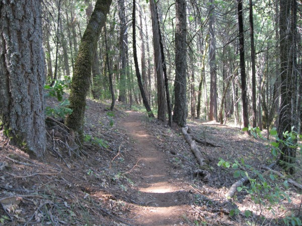 24_trail to lower springs