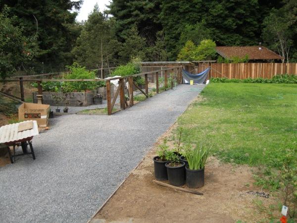 3_Louise's garden