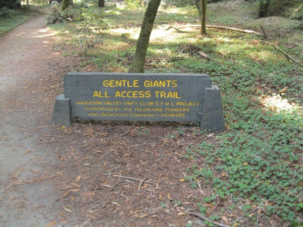 8_Hendy Woods entrance