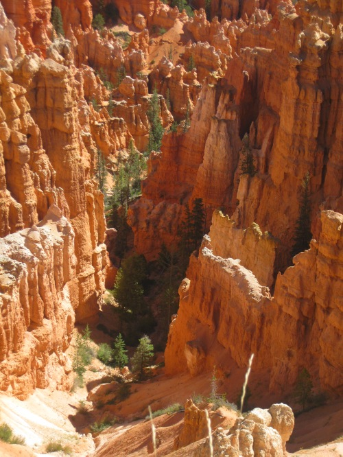11_somtimes narrow side canyons...