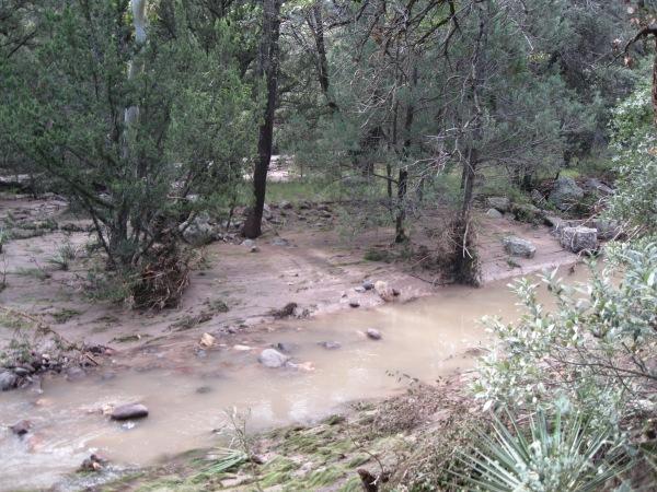 28_the creek has cut new channels