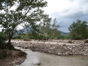 4c_upstream