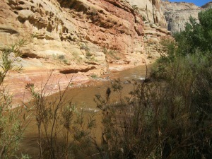 6_Fremont River canyon