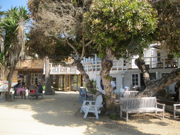 10_village center