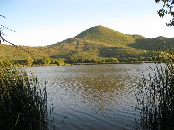 19_Lake 6_morning across
