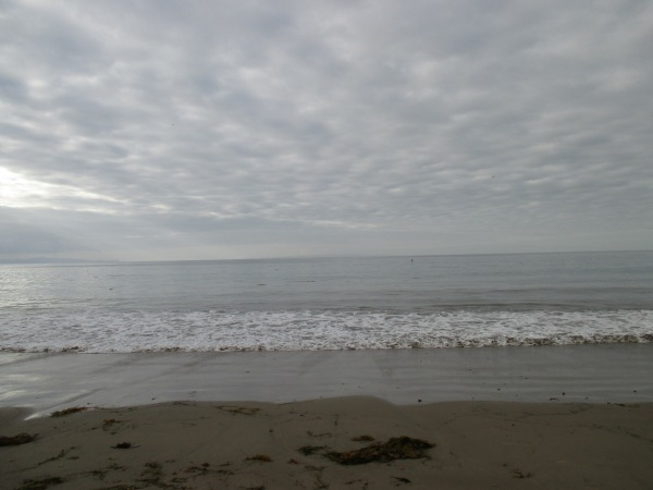20c_beach warm grey 2