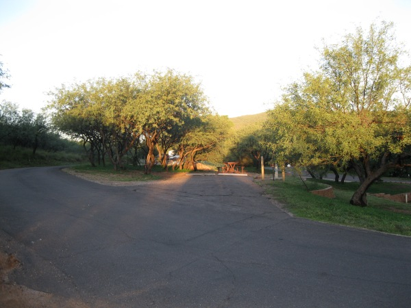 5_Campground 1_morning