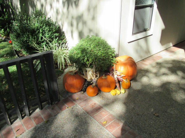 5_pumpkins, Indian corn...
