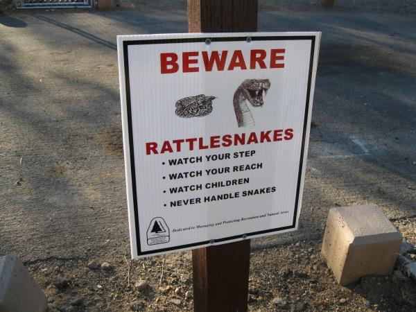 6_Rattlesnakes