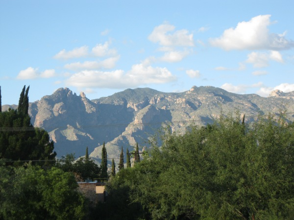 Catalina Mts. 1