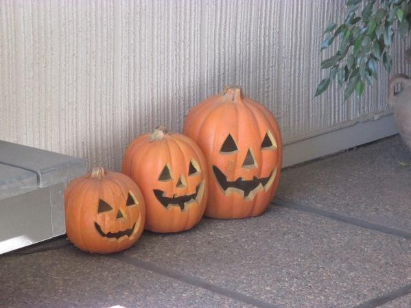 October 26 - Davis-Vallejo-Novato 010