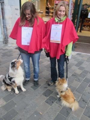 12f_Canine Club